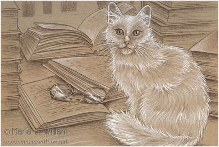 A fluffy white cat sits with tail curled around its paws, looking at out the viewer from the mid-right; a pair of round glasses lay to the left on top of an open book with the suggestion of lines of text; another open book lays partially atop it and behind the cat, and another open book lay further in the background. Stacks of books occupy the right edge (one in front of another) and the left edge of the illustration. Brown pencil and white charcoal on toned paper.