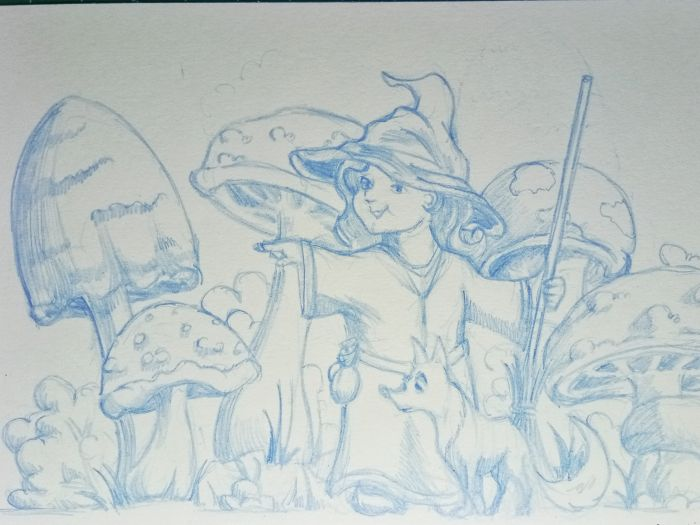 A blue detailed sketch depicts a field of mushrooms of varying height, shape, and sizes. The mushrooms seem the size of large hedges compared to the little witch depicted among the mushrooms. Her body faces the viewer but she's looking and pointing to the viewer's left. She points with her right arm and holds a broom with her left. A waist-high fox stands next to her and looks in the direction of her pointing. The witch is wearing shapeless robes, belted with a small sack at her belt. She also has the requisite witch's hat on, which is a bit lumpy.
