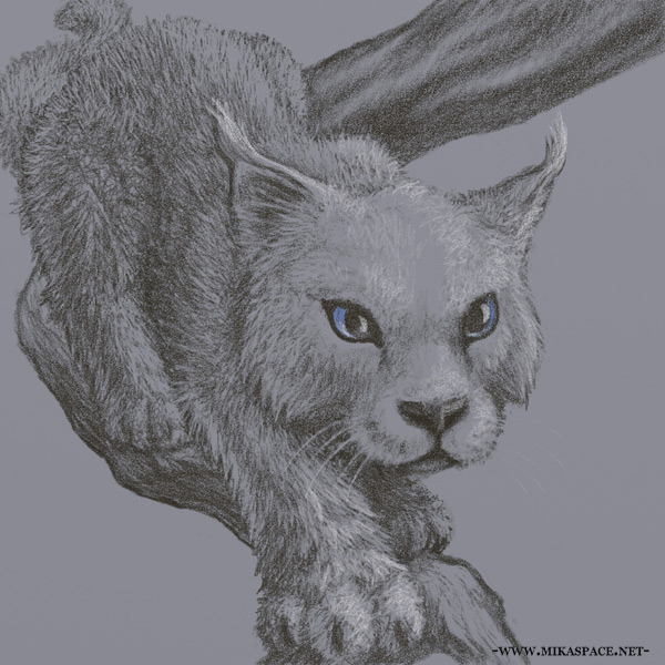 A young blue-eyed lynx-looking snow-cat of Torn World crawls down a branch toward the viewer. Detailed sketch on blue-grey paper.